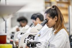 Woman in lab coat looking into microscope with two other people doing the same blurred out in the background.